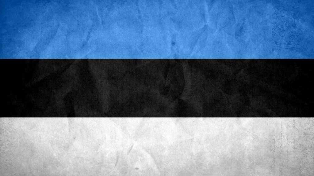 estonya bayrağı
