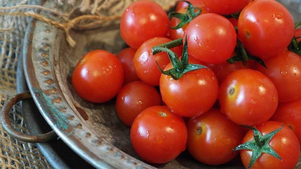 cherry domates