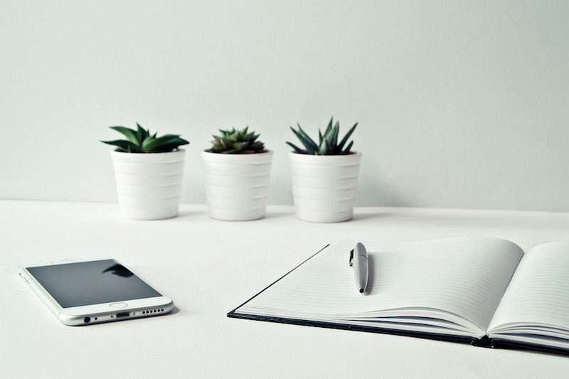 zihin haritası çalışma masası defter kalem bitkiler telefon