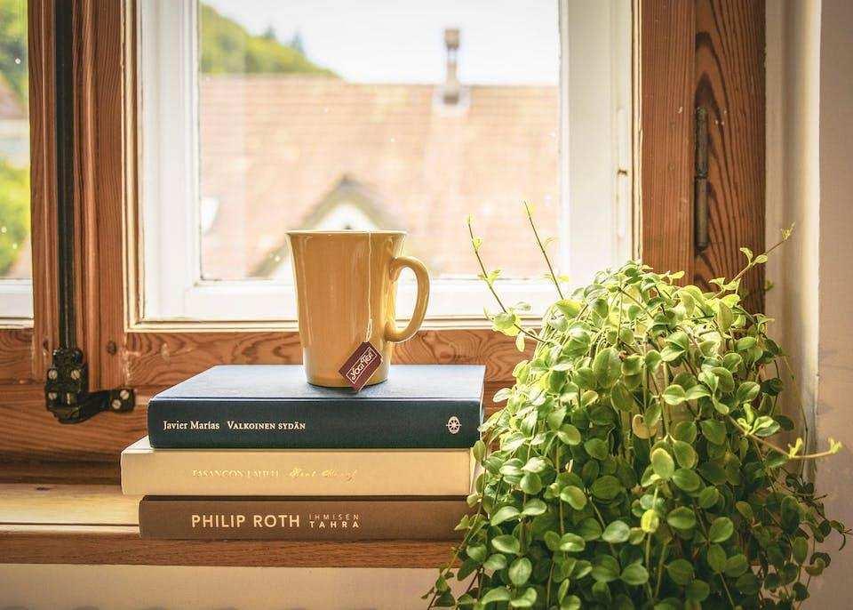 batı edebiyatında akımlar pencere önü kitaplar bitki