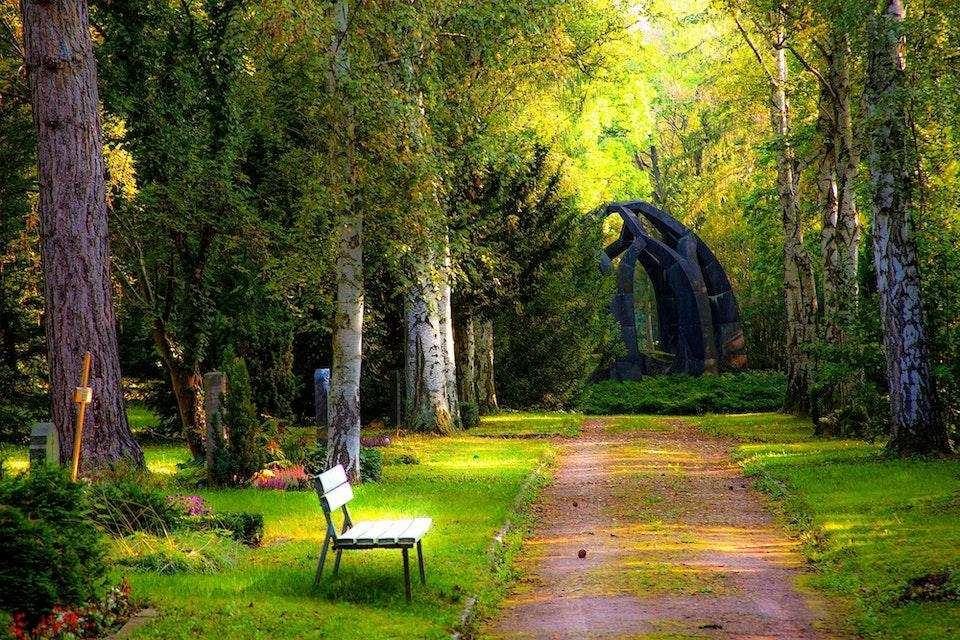 sağlıklı yaşam doğa orman bank