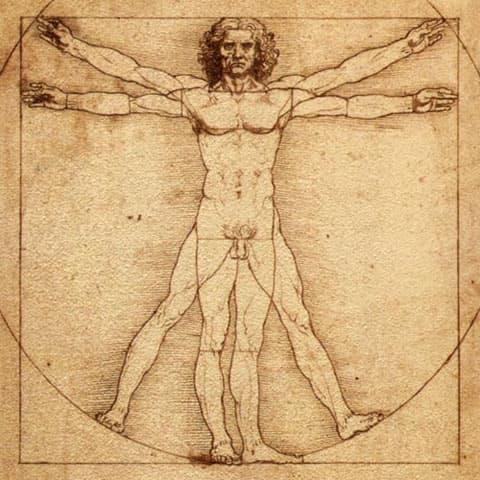 leonardo da vinci vitruvius adamı